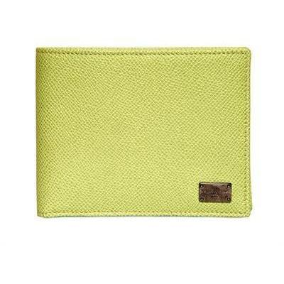 Dolce & Gabbana Strukturierte Lederbrieftasche mit Dauphine Druck Grün
